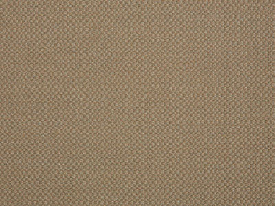 Sunbrella Action Taupe (44285-0003)